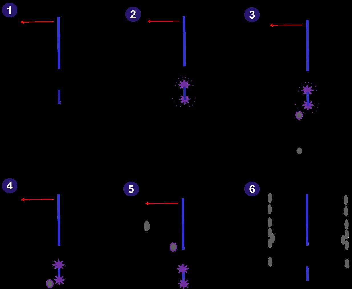 Wie funktioniert der KMA Elektrofilter?